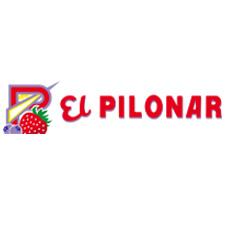 EL PILONAR, S. C. A.