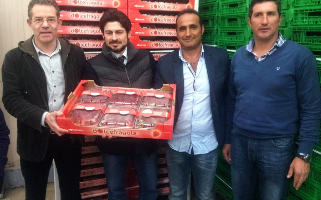 Freshuelva participa en el Grupo de Contacto Hispano-Francés-Italiano de Fresa