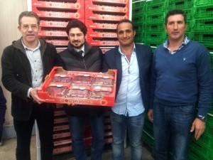Grupo de Contacto Hispano-Franco-Italiano 2013