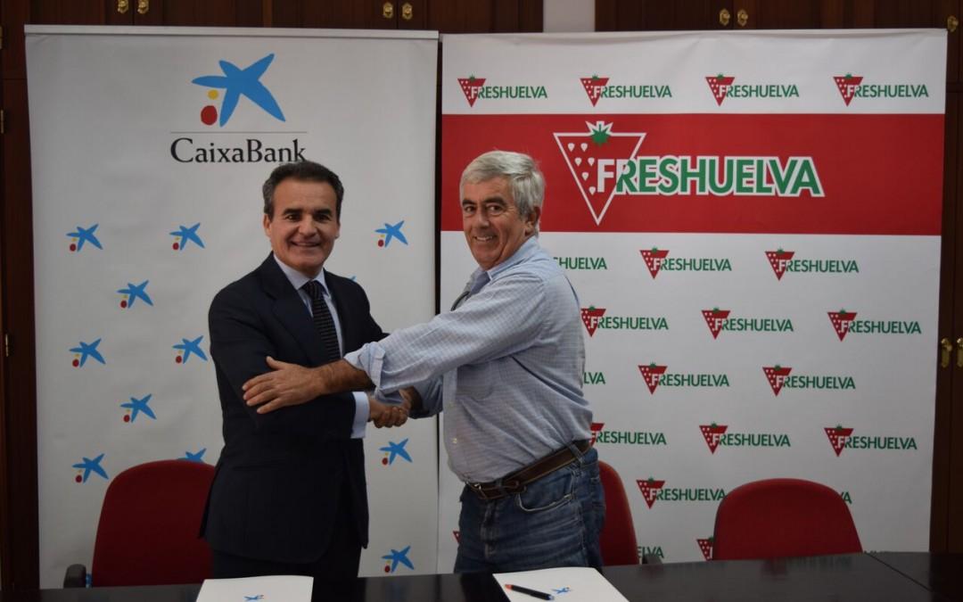 Freshuelva y Caixabank firman un convenio para impulsar un nuevo etiquetado nutricional para los berries onubenses