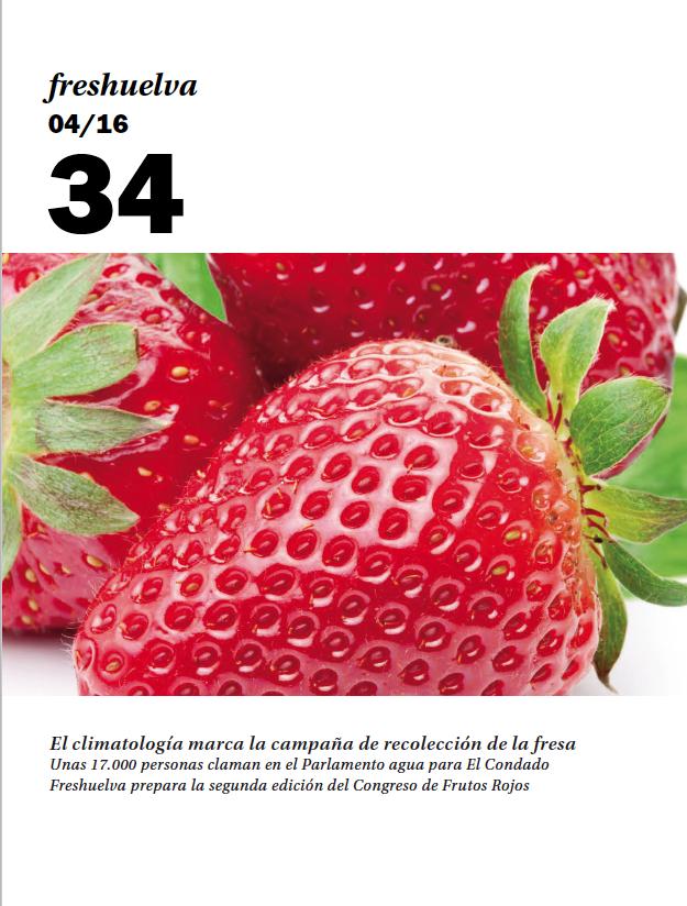 Freshuelva 34
