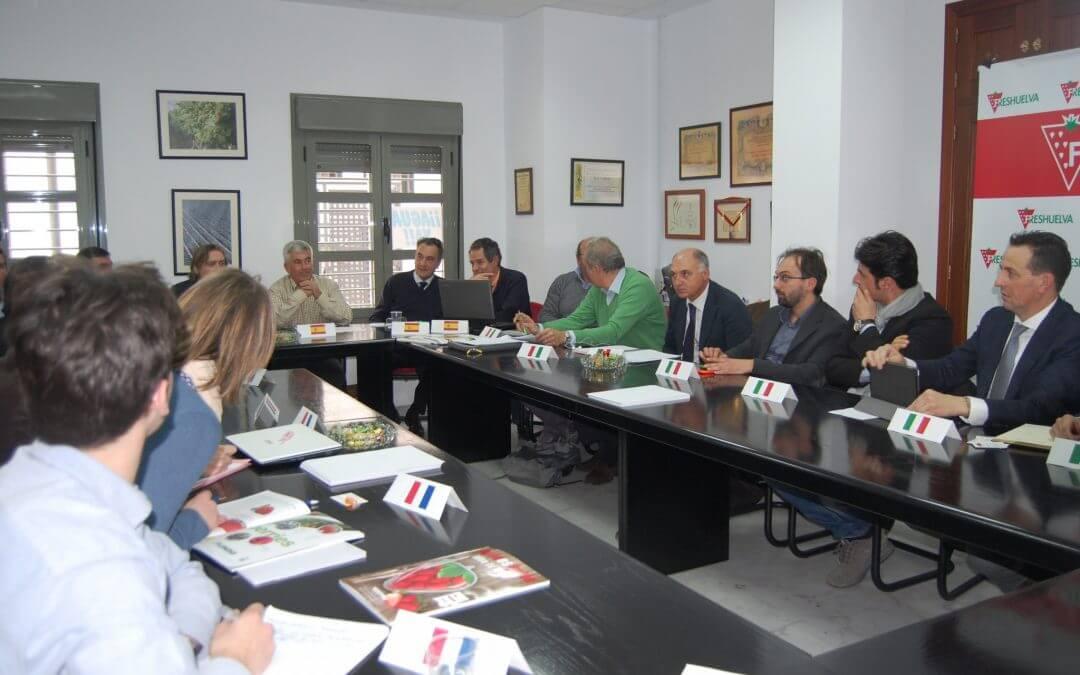 El Grupo Hispano-Franco-Italiano de la Fresa analizará las previsiones de la campaña 2016/2017 en Francia