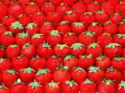 Freshuelva solicita al Ministerio de Agricultura la firma de un protocolo para exportar frutos rojos a China