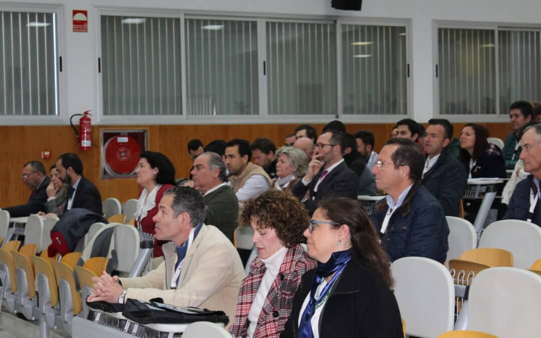 Huelva es la provincia con mayor producción de arándano en España