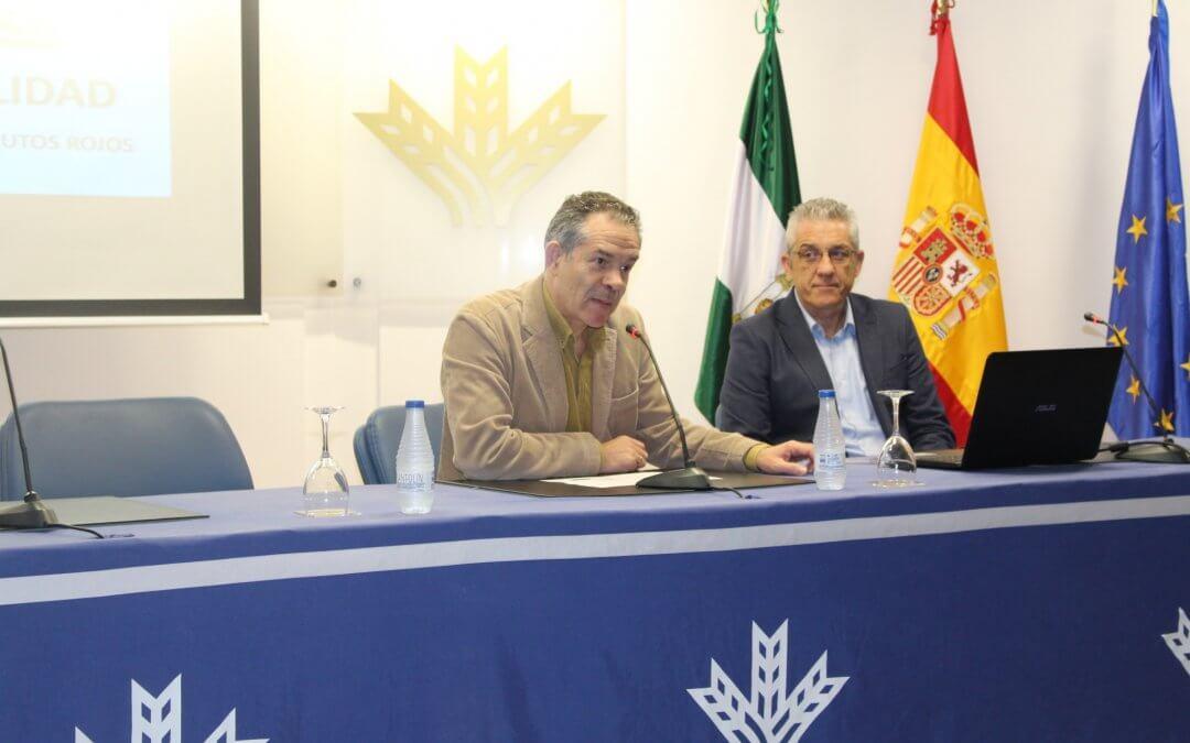 Los envases, las nuevas tecnologías y la seguridad alimentaria, a debate en el V Foro Freshuelva Partner