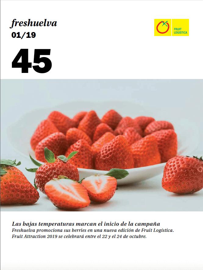 Revista 45 peque