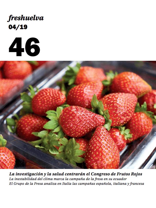 Revista 46