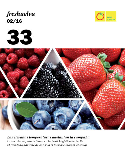 Freshuelva 33