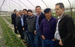 Grupo de Contacto Hispano-Franco-Italiano 2