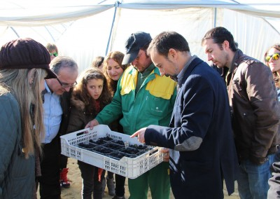 Visita de nutricionistas y dietistas andaluces a empresas de Freshuelva