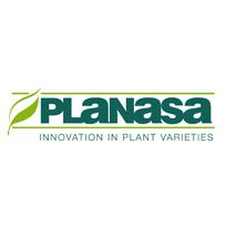 Partner3 Planasa