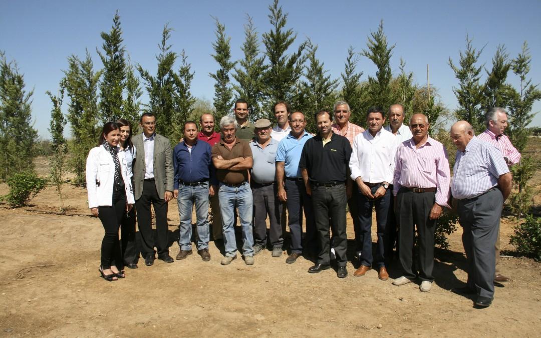 Comienza la plantación de árboles de la pantalla vegetal en las zonas agrícolas de Palos
