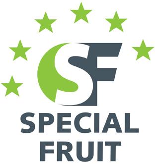 SPECIAL FRUIT PRODUCCIONES, S. L.