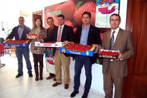 berriesfusión 2013 2