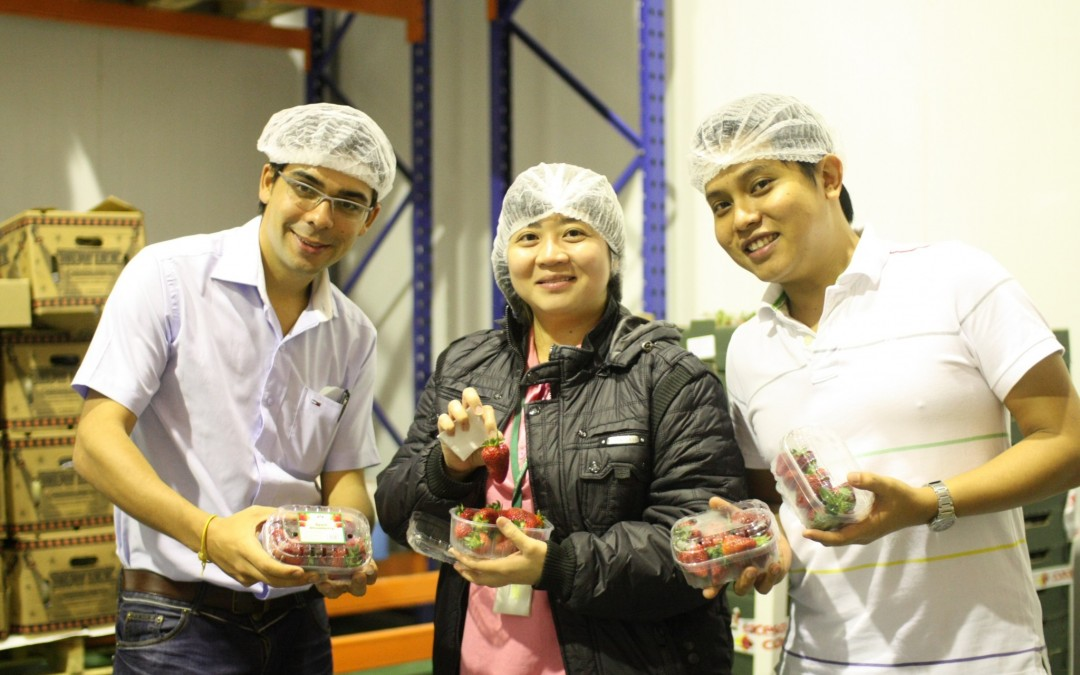La fresa de Huelva llega a Malasia e Indonesia