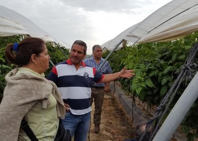 Costa de Huelva visita campo