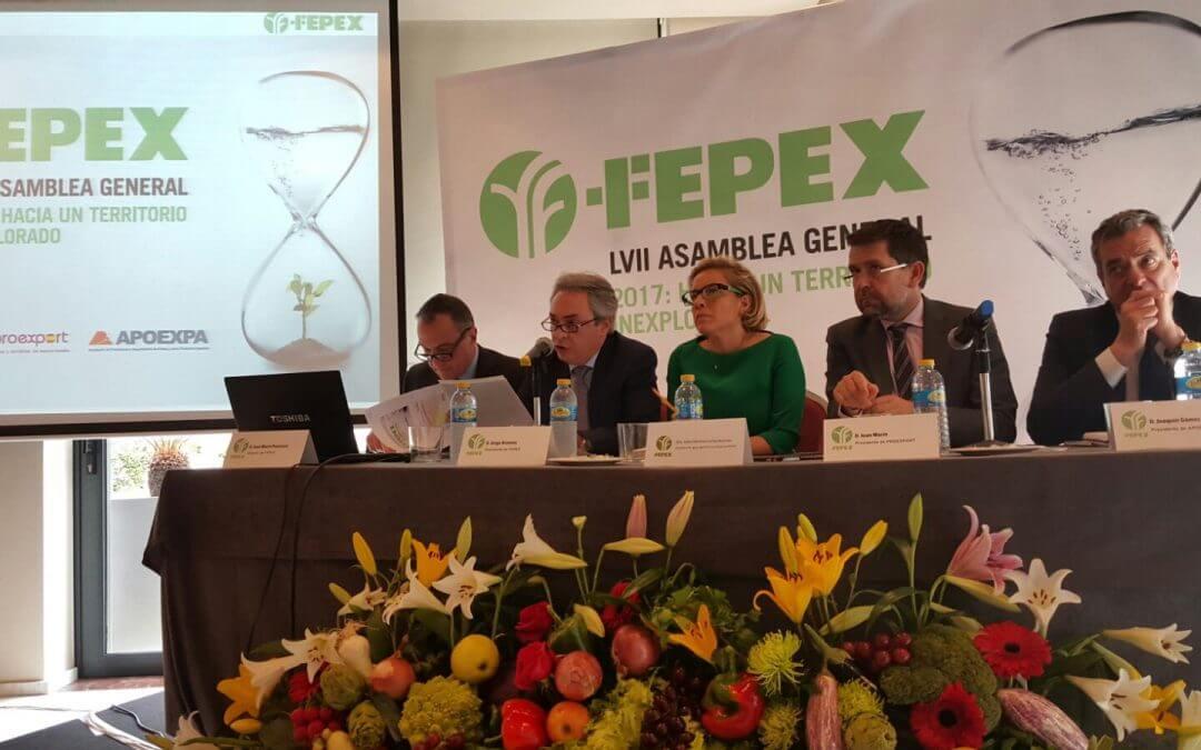 La Asamblea de FEPEX aborda las tendencias proteccionistas y la falta de agua entre los principales retos del sector