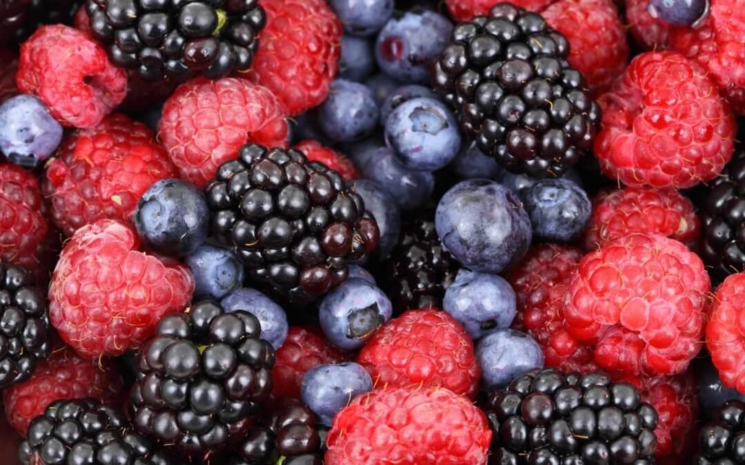 Los frutos rojos, ingredientes que no pueden faltar para cuidar tu cerebro