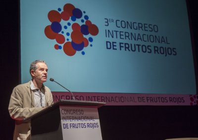 RafaelDominguez