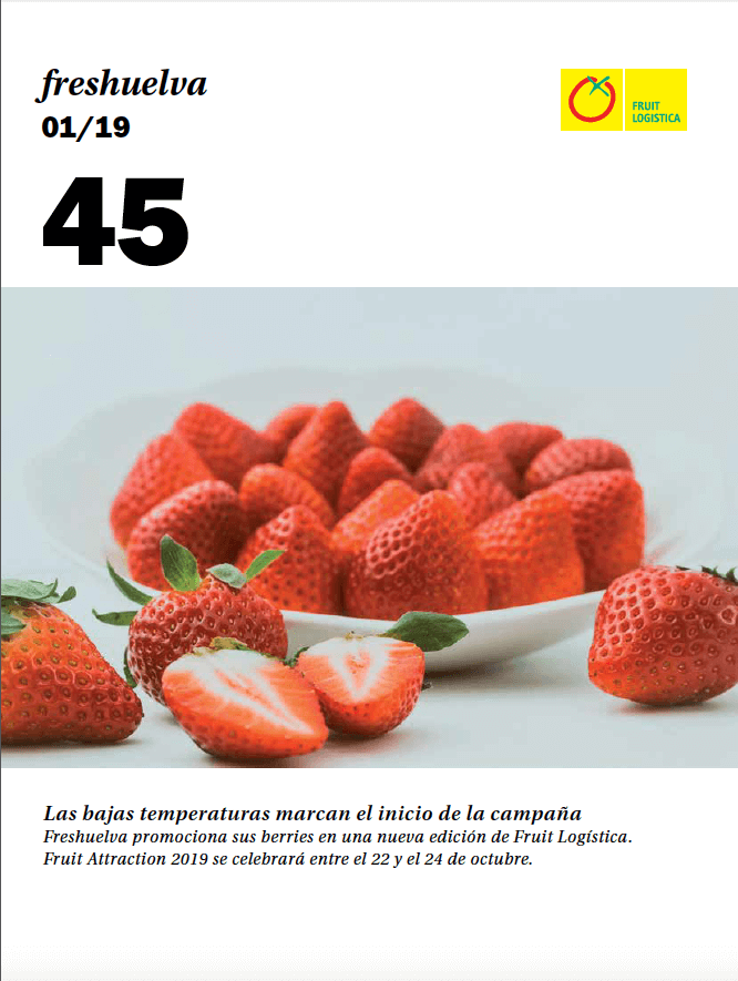 Revista 45 peque