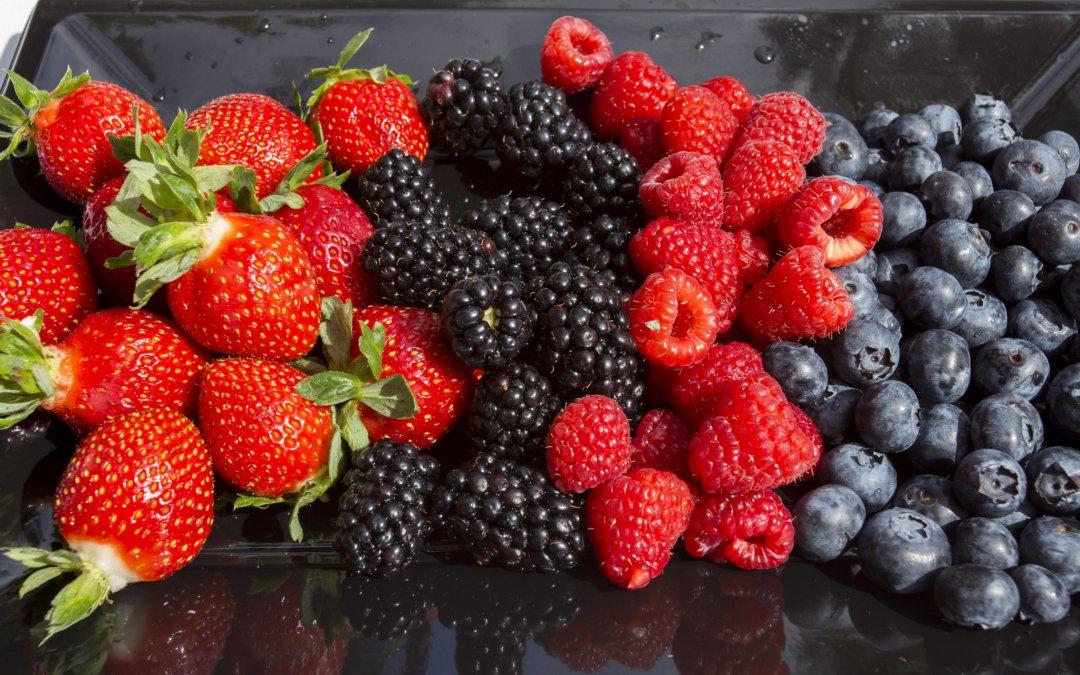 Freshuelva inicia los trámites para exportar frutos rojos a la India