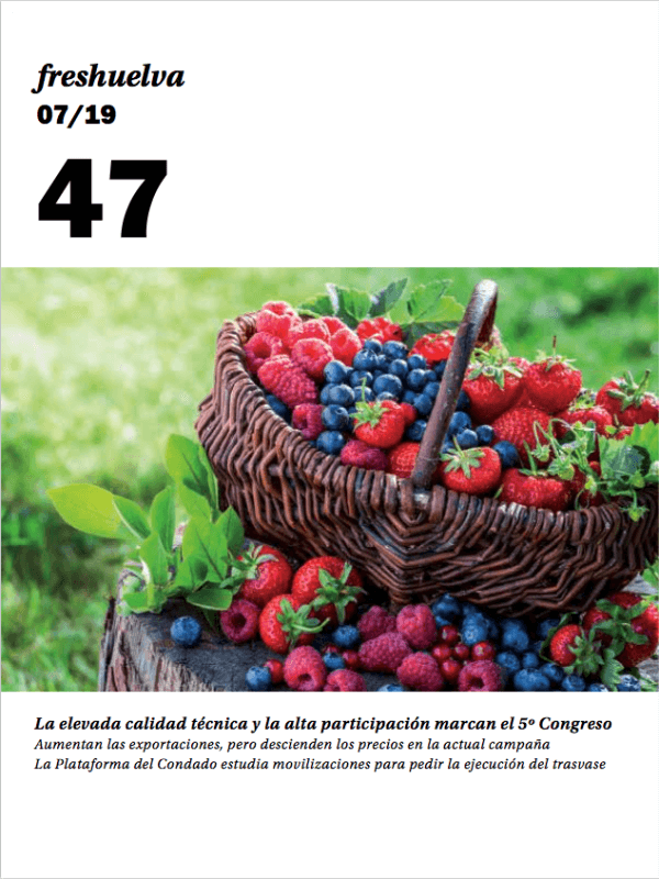 Freshuelva 47
