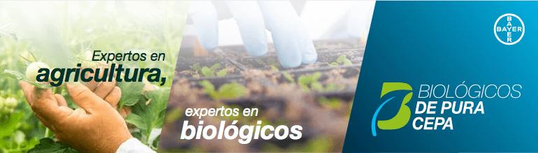 Bayer organiza el jueves 19 la jornada de Biológicos de Pura Cepa