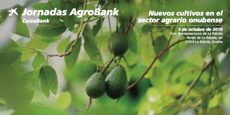 Los nuevos cultivos del sector agrario onubense, a debate en las Jornadas Agrobank