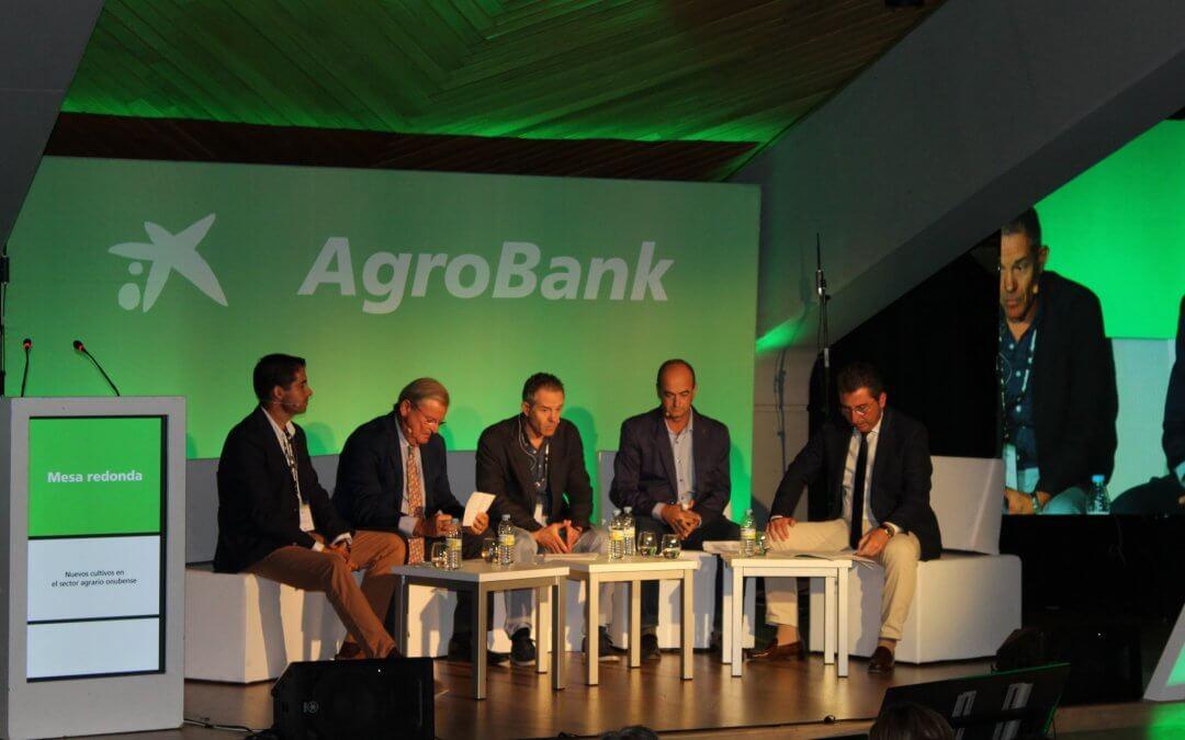 Freshuelva reclama agua, infraestructuras y celeridad en los trámites para abrir nuevos mercados en las Jornadas Agrobank