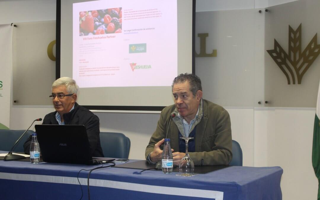 Freshuelva celebra su VIII Foro Partner de Frutos Rojos