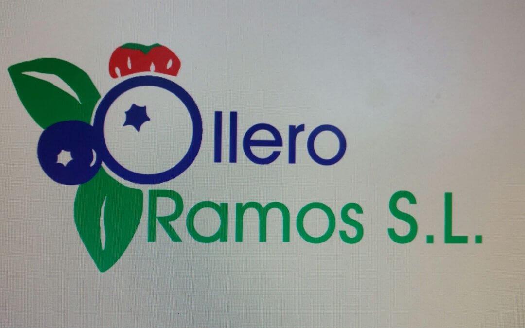 OLLERO RAMOS, S.L.
