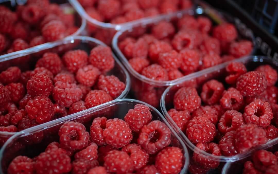 Freshuelva colabora con Extenda en la jornada 'Frutas y hortalizas en Reino Unido'