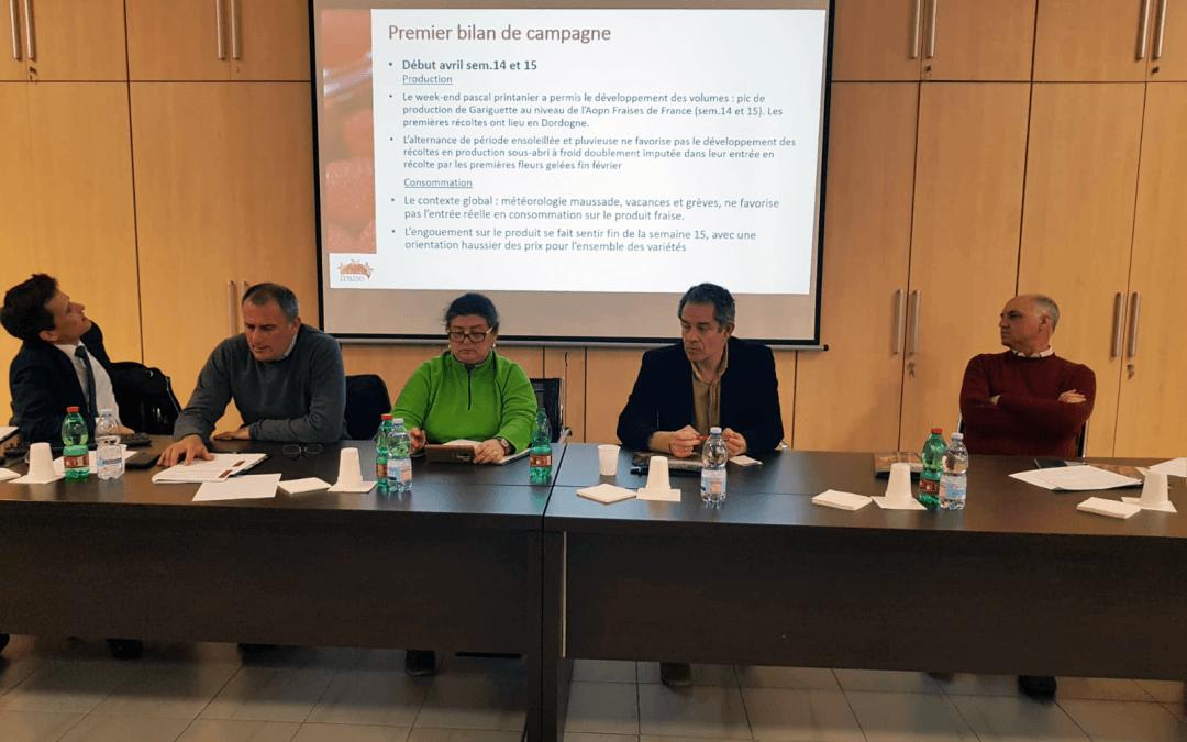 Freshuelva participa en la reunión que el Grupo de Contacto de la Fresa mantiene esta semana en Francia