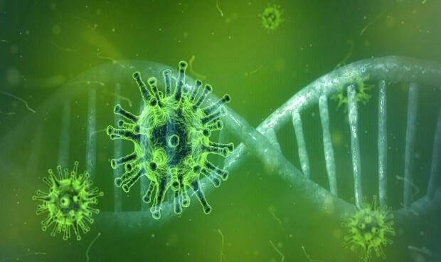 Protocolo de actuación frente al coronavirus COVID-19