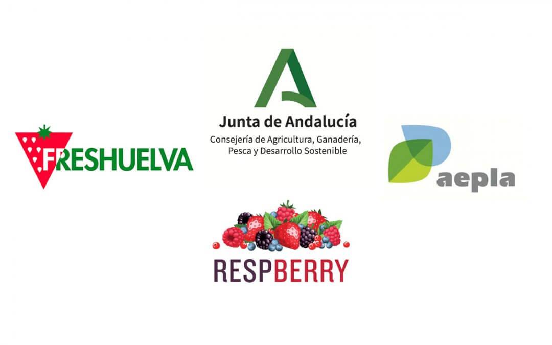 Freshuelva, Aepla y la Consejería de Agricultura ponen en marcha el proyecto #RESPBerry de concienciación sobre las buenas prácticas agrícolas